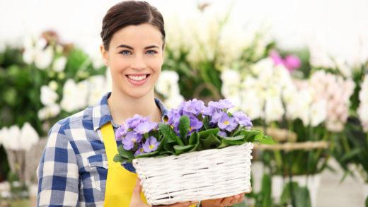 Самым простым и природным освежителем воздуха являются комнатные растения. Какие же из них наиболее эффективны в очистке домашнего воздуха?